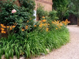Daylilies In The Landscape furthermore Dry stone in addition Watch besides Interior Design Ideas Small Living Room additionally Watch. on design ideas for front gardens